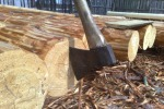 какую породу древесины вы используете для производства срубов