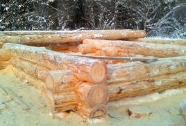 Строительство бревенчатого дома зимой
